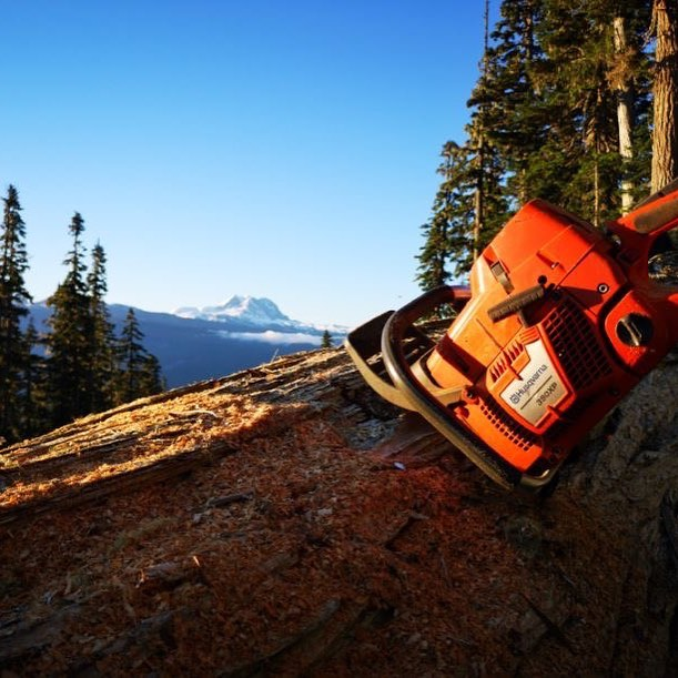 Sawing timber with a view! @HusqvarnaCA #ClientLove #Timber #Canada #GreatCanadianOutdoors #views #chainsaw #HusqvarnaCA